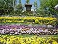 Flower gardens in Royal Flora Expo 2006, Chiangmai, Thailand.jpg