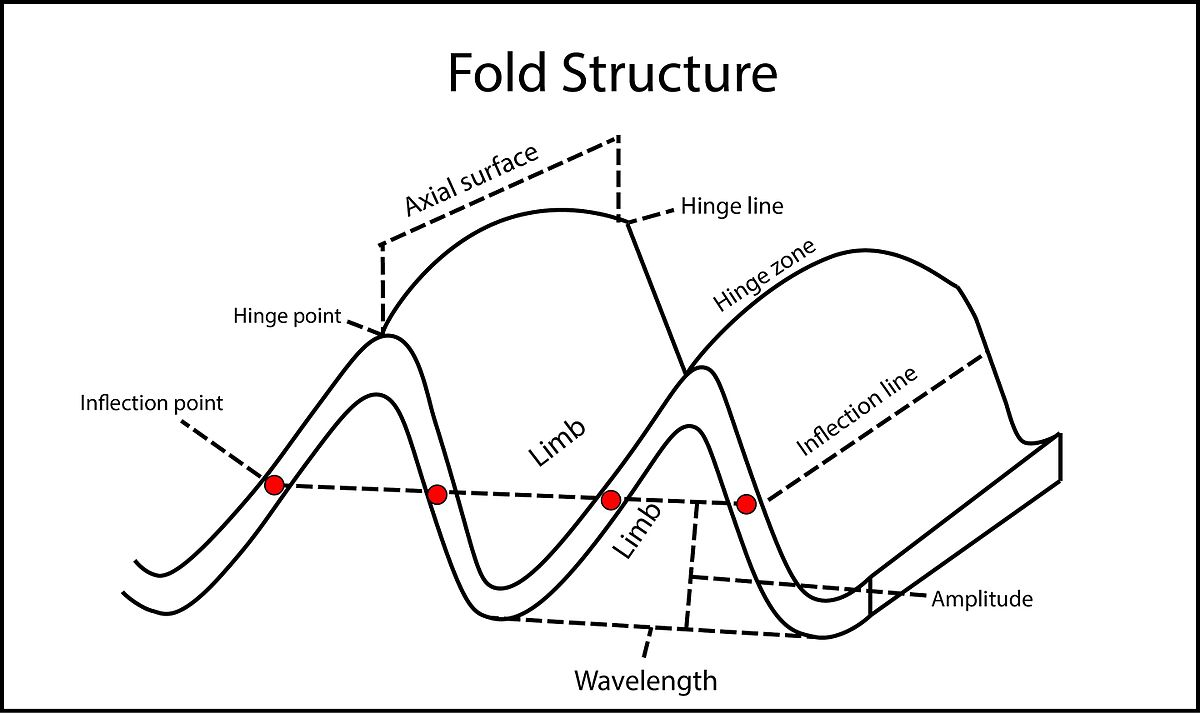 3d Fold Evolution Wikipedia