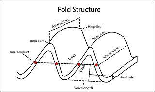 3D fold evolution