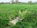 Footbridge near farm track - geograph.org.uk - 1261955.jpg