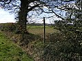 Footpath to Brewood - geograph.org.uk - 147523.jpg