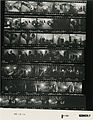 Ford B1138 NLGRF photo contact sheet (1976-08-18)(Gerald Ford Library).jpg