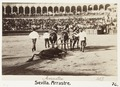 Fotografi av Sevilla. Arrastre - Hallwylska museet - 104822.tif
