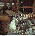 Fotothek df n-30 0000051 Facharbeiter für Glastechnik.jpg