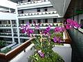 Four Seasons Bangkok P1120990.JPG