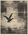 Frank W. Benson, Rippling Water, 1920.jpg