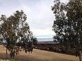 Fresno, CA, USA - panoramio (42).jpg