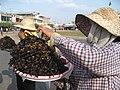 Fried tarantula Cambodia.jpg