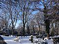 Friedhof Seestrasse 18.01.2016 11-24-24.jpg