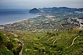 From Erice To Monte Cofano (33614455).jpeg