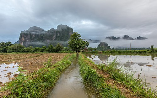Front view of a stream with a tree as vanishing point, mountains and mist in the countryside of Vang Vieng