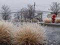 Frozen Parking Lot (217706989).jpeg