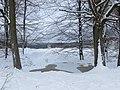 Frozen pond - January 2013 - panoramio.jpg