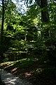 Fußweg Felsengarten Sanspareil 04082019 003.jpg