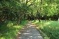 Futamurayama Walking Trail1, Toyoake 2012.JPG
