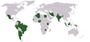 نقشه کشورهای عضو گروه ۱۵ (G15)
