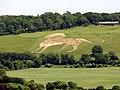 GOC Ashridge & Ivinghoe 109 Whipsnade White Lion (36526822791).jpg
