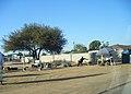 Gaborone, Botswana, 2010 (4901202551).jpg