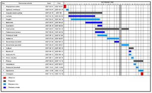Diagramma di gantt su club benchmarking for Software di progettazione di costruzione di case gratuito