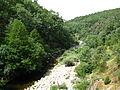 Garganta Jaranda, desde el puente medieval del mismo nombre. Junio de 2012.jpg