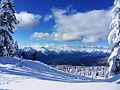 Garibaldi Provincial Park January 2009 (5).jpg