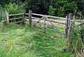 Gate, Minnowburn Path - geograph.org.uk - 1407363.jpg
