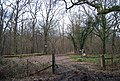 Gate to a private woodland, Clayhill Woods, Clay Hill Rd - geograph.org.uk - 1759252.jpg