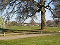 Geocaching, Roseville, CA 12 - panoramio.jpg