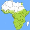 Geographic distribution (green shade) of Rousettus aegyptiacus in Africa.tif