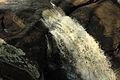Gfp-georgia-high-falls-state-park-waterfall.jpg