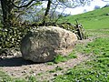 Glacial Erratic near Hargreaves Barn - geograph.org.uk - 434694.jpg