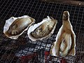 Grilled oysters (14717836398).jpg