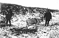 Group of people with reindeer and sled, location unknown, ca 1899 (WARNER 519).jpeg