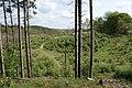 Gudenå dalen - panoramio.jpg
