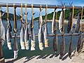 HK 西貢 Sai Kung 清水灣半島 Clear Water Bay Peninsula 布袋澳 Po Toi O Piers 鹹魚 dried salt fishes August 2018 SSG 02.jpg