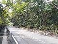 HK 香港北區North District 本地遊 行山 Hiking 大石磨 Tai Shek Mo hill mountain November 2020 SS2 46.jpg
