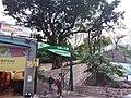 HK TST 尖沙咀 Tsim Sha Tsui Chatham Road Hart Avenue to Mody Road 棉甸臺 Minden Row March 2020 SSG 10.jpg