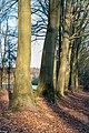 Haltern am See, Naturpark Hohe Mark -- 2018 -- 1314.jpg