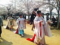 Hana shizume no matsuri in the row of cherry blossom trees (2012).jpg