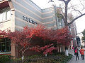 Hangzhou Youth and Children's Center 18.jpg