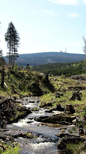 Ilse (Oker) - The Ilse valley with the Brocken in the distance (2012)