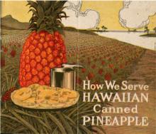 Hawaiian pineapple brochure