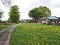 Hellifield Green - geograph.org.uk - 171781.jpg