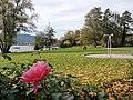 Herbststimmung im Strandbad Tiefenbrunnen 2013-10-26 14-33-19 (P7700).JPG