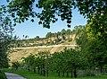 Hessigheim - Felsengärten - Ansicht vom Westufer 2.jpg