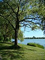 High Park, Grenadier Pond - panoramio.jpg
