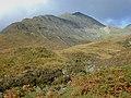 Hillside south of the Abhainn nan Leac - geograph.org.uk - 636320.jpg