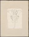 Hippopotamus amphibius - bekken - 1700-1880 - Print - Iconographia Zoologica - Special Collections University of Amsterdam - UBA01 IZ21900023.tif