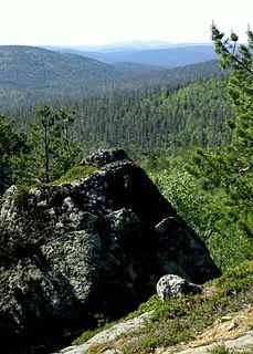 Wilderness Undisturbed natural environment