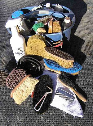 Various brushes and other tools used for groom...